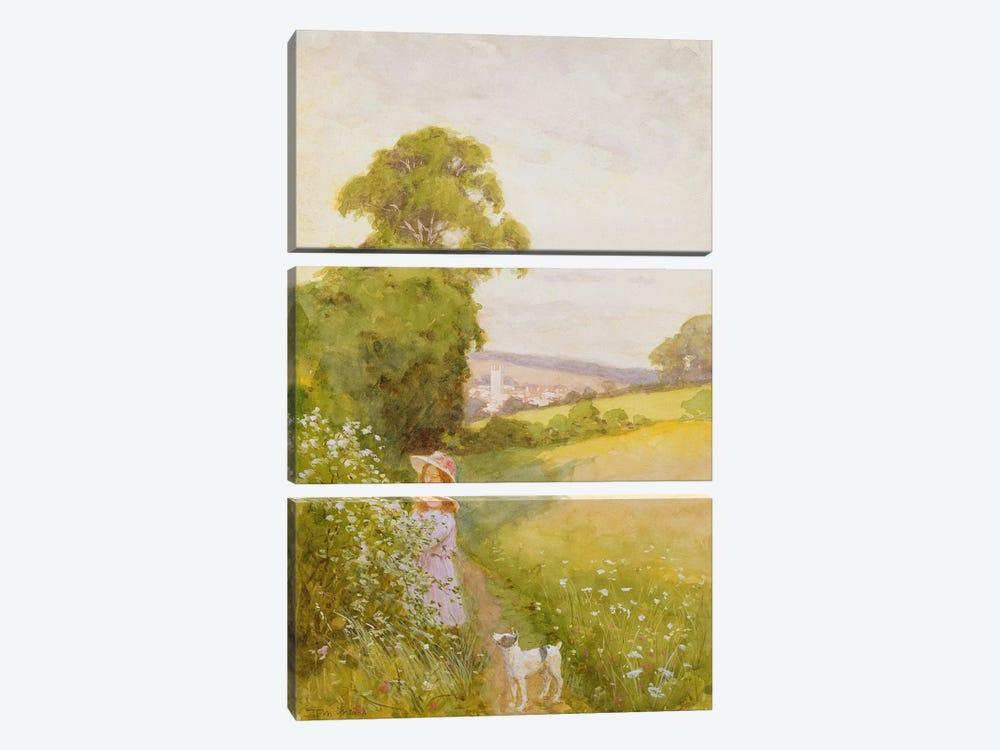 Picking Flowers  by Thomas Frederick Mason Sheard 3-piece Canvas Art