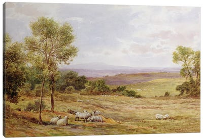 Cumberland hills from Wardrew House, Gilston  Canvas Art Print