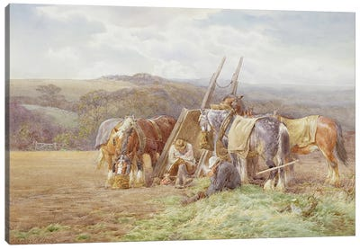 Resting in the Field Canvas Art Print
