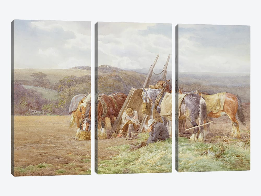 Resting in the Field by Charles James Adams 3-piece Canvas Wall Art