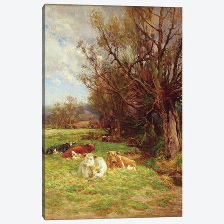 Cattle grazing  Canvas Print #BMN3599} by Charles James Adams Art Print