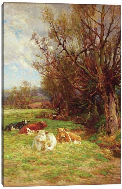 Cattle grazing  Canvas Art Print