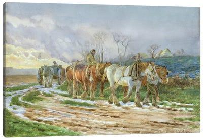 Homeward Bound  Canvas Art Print