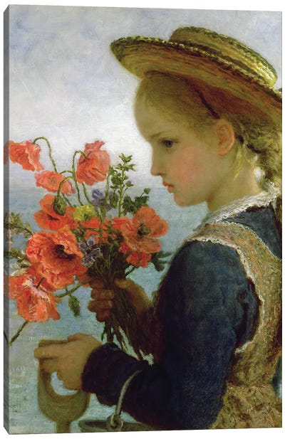 Poppy Girl  Canvas Art Print
