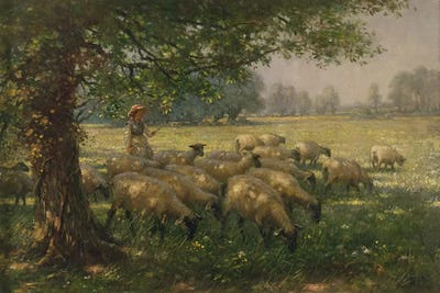 The Shepherdess Canvas Art Print By William Kay Blacklock