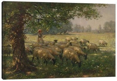 The Shepherdess  Canvas Print #BMN3613