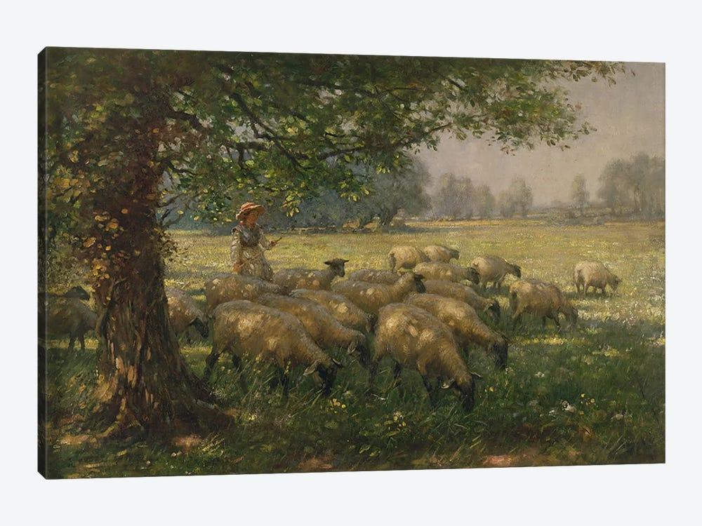 The Shepherdess  by William Kay Blacklock 1-piece Art Print