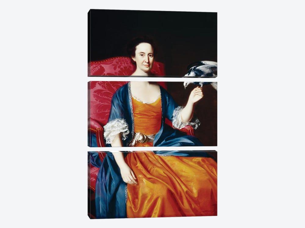 Mrs. Benjamin Hallowell, 1766/67  by John Singleton Copley 3-piece Canvas Artwork