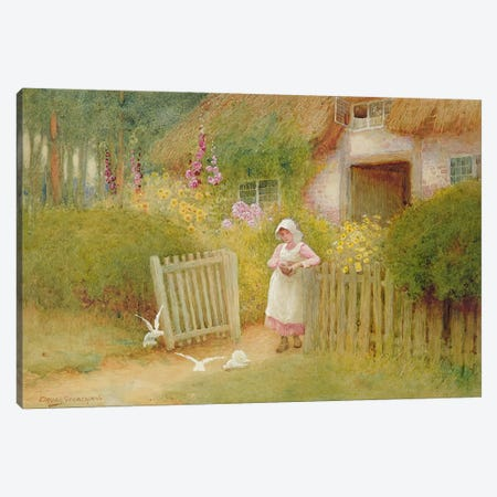 Feeding the Doves  Canvas Print #BMN3681} by Arthur Claude Strachan Canvas Print