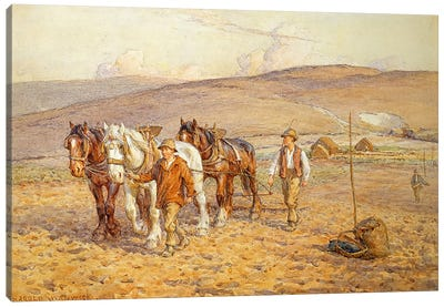 Ploughing Canvas Art Print