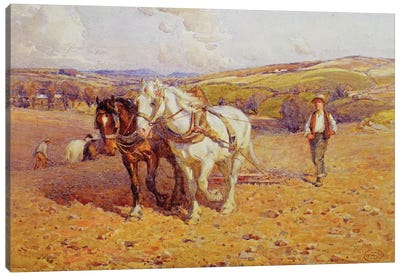 Ploughing Canvas Art Print