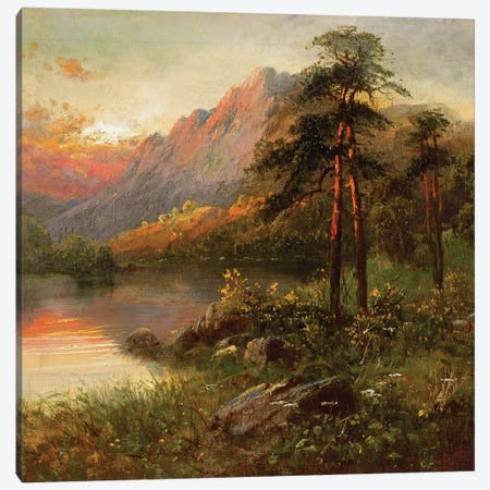 Highland Solitude  Canvas Print #BMN3685} by Frank Hider Canvas Artwork