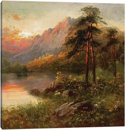 Highland Solitude  Canvas Art Print