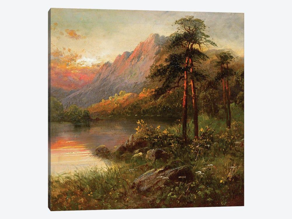 Highland Solitude  by Frank Hider 1-piece Canvas Wall Art