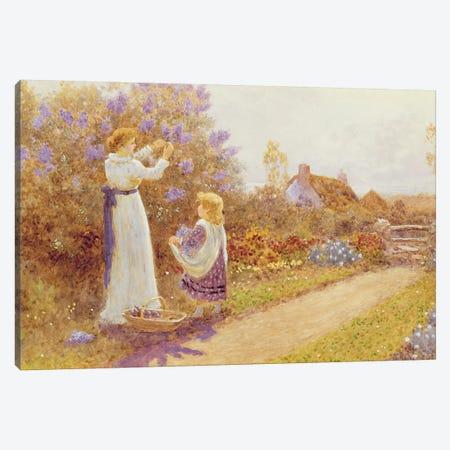 Lilacs, 1899  Canvas Print #BMN3700} by Thomas James Lloyd Canvas Artwork