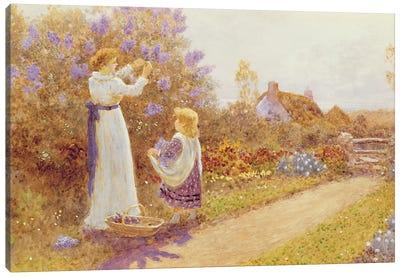 Lilacs, 1899  Canvas Art Print