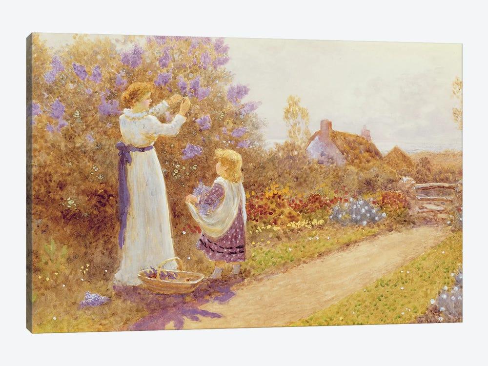 Lilacs, 1899  by Thomas James Lloyd 1-piece Canvas Artwork