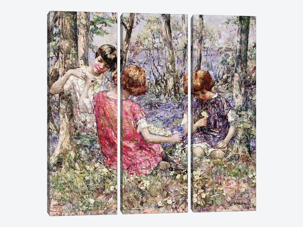 The Primrose Chain  by Edward Atkinson Hornel 3-piece Art Print
