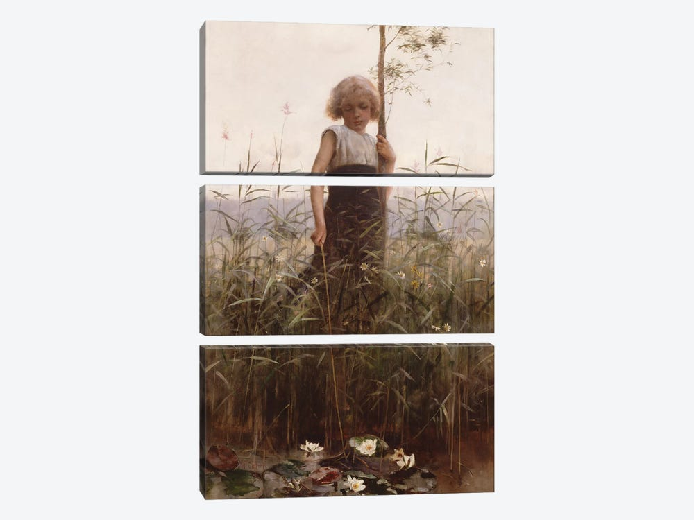 The Water Lilies  by Hector Caffieri 3-piece Canvas Artwork
