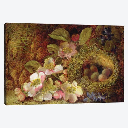 Springtime  Canvas Print #BMN3725} by Vincent Clare Canvas Art Print