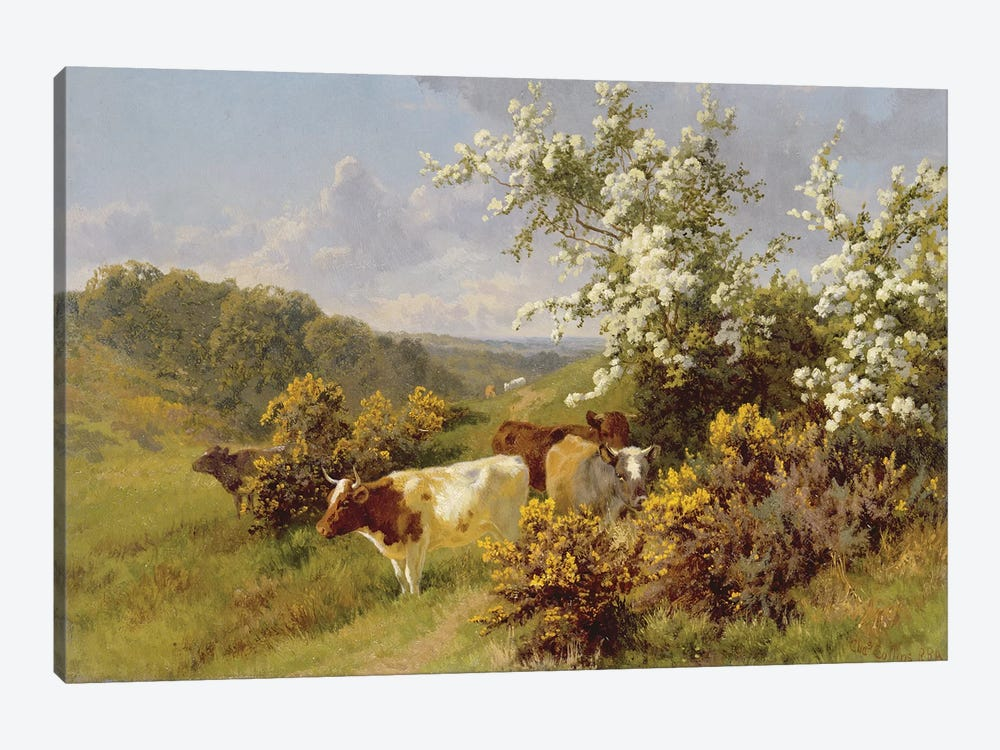 May Blossom  by Charles Collins 1-piece Art Print