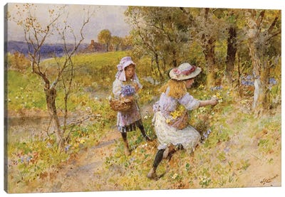 The Primrose Gatherers  Canvas Art Print
