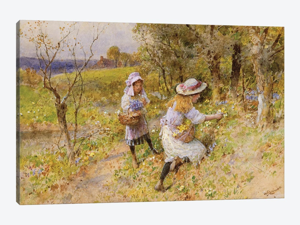 The Primrose Gatherers  by William Stephen Coleman 1-piece Canvas Print