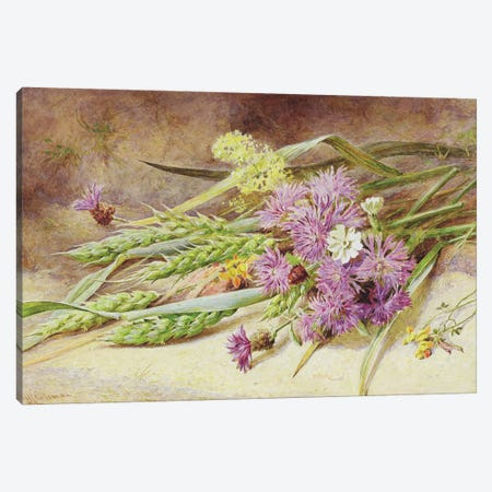 Green Wheat and Wild Flowers  Canvas Print #BMN3733} by Helen Cordelia Coleman Angell Art Print