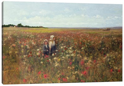 The Poppyfield, 1897  Canvas Art Print