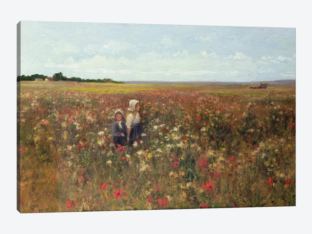 The Poppyfield, 1897  by Kate Colls 1-piece Canvas Art Print