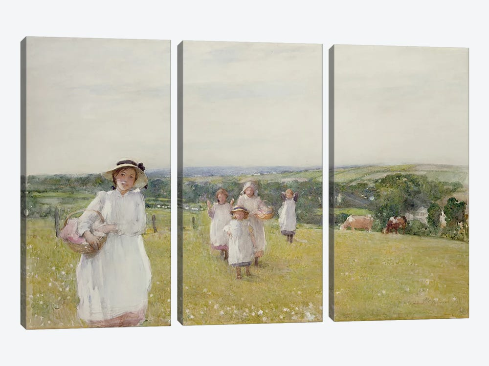 The Picnic  by Henry Crockett 3-piece Canvas Art Print