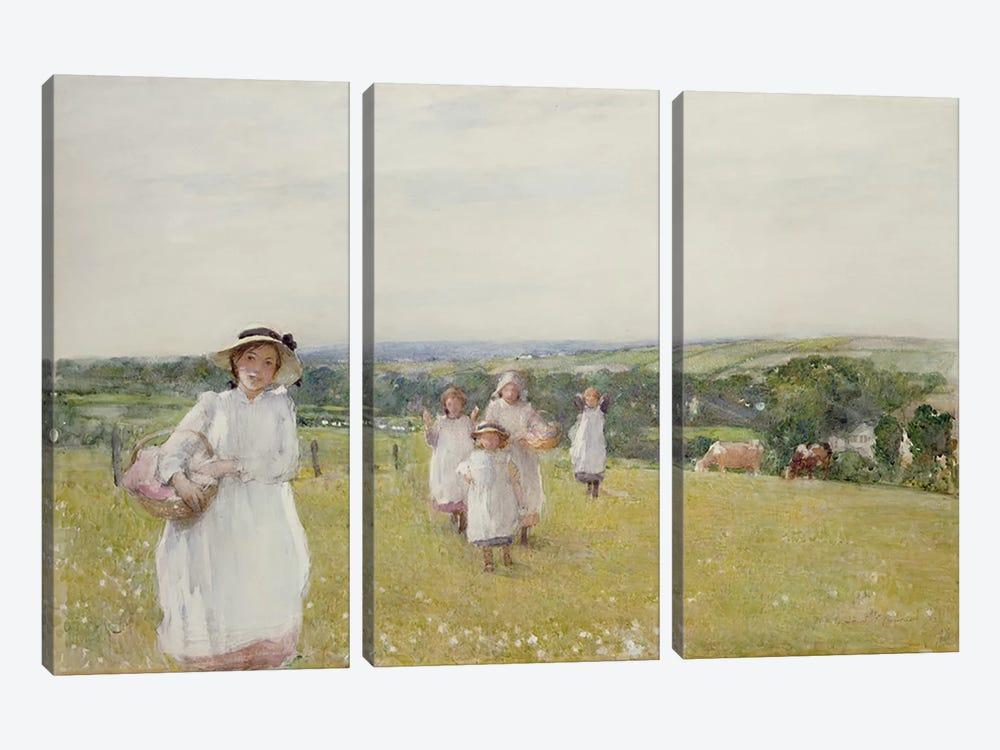 The Picnic  by Henry Crockett 3-piece Canvas Art Print