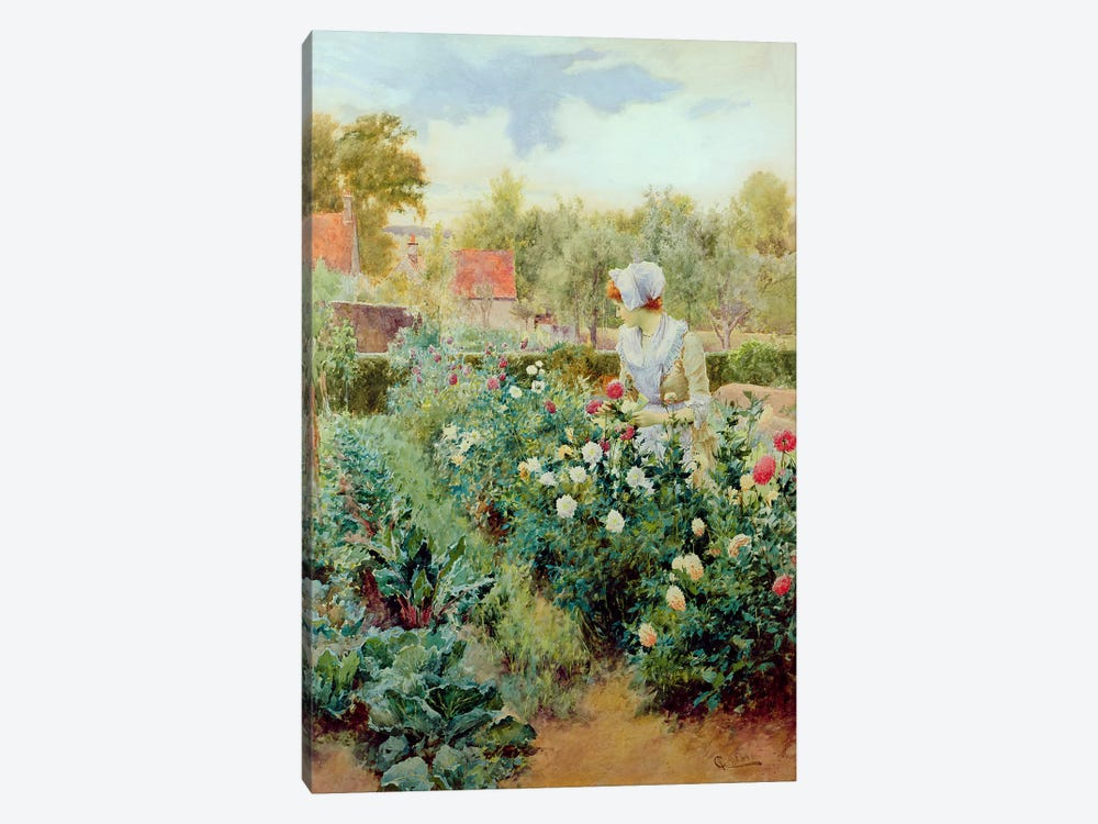 Dahlias, 1896 by Alfred Glendening 1-piece Canvas Artwork