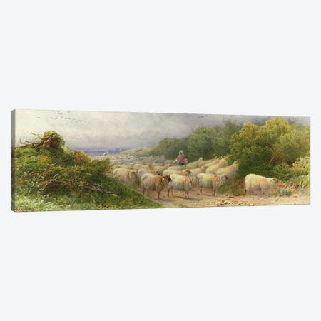 Sheep on the Downs  Canvas Print #BMN3745} by William W. Gosling Art Print