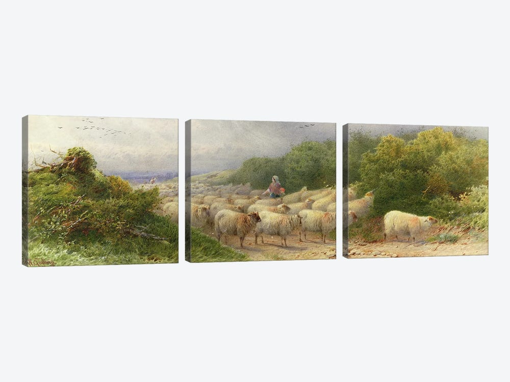 Sheep on the Downs  by William W. Gosling 3-piece Art Print