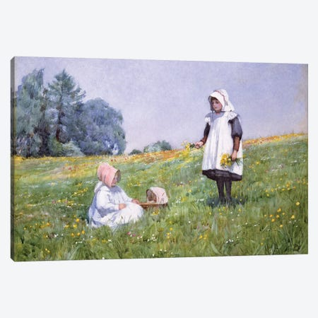 Buttercups and Daisies  Canvas Print #BMN3748} by Minnie Jane Hardman Canvas Art