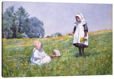 Buttercups and Daisies  Canvas Art Print
