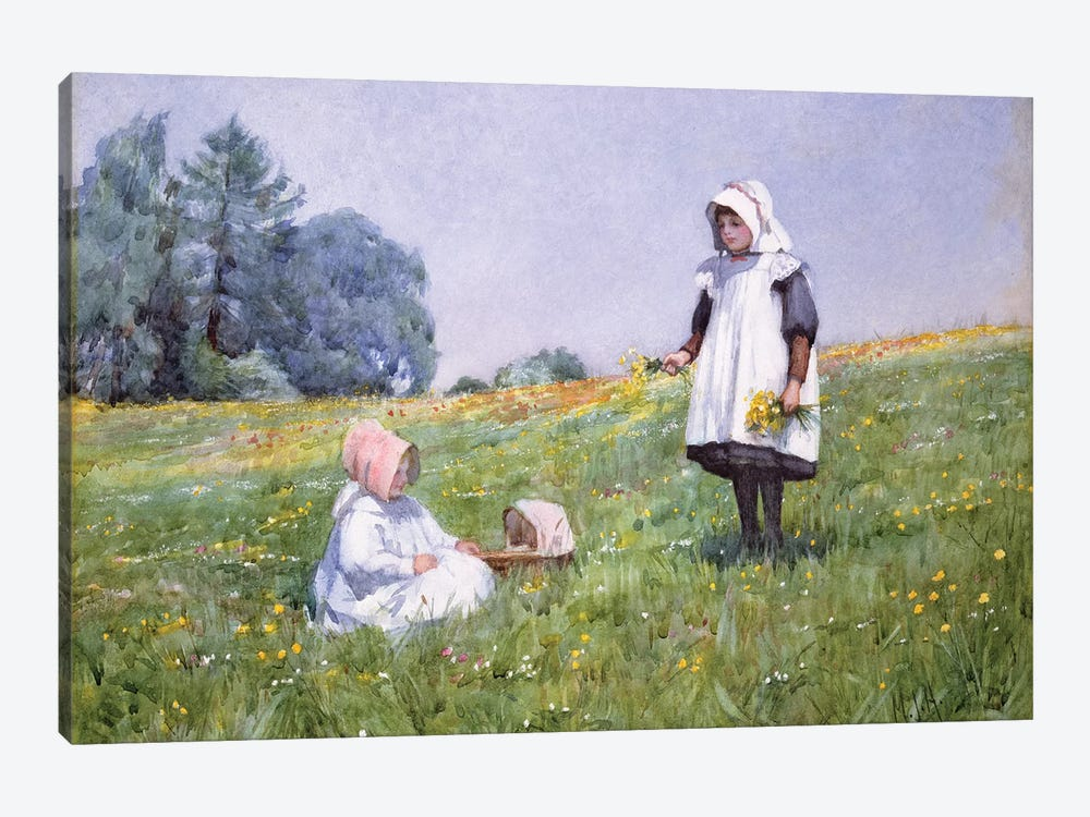 Buttercups and Daisies  by Minnie Jane Hardman 1-piece Canvas Art