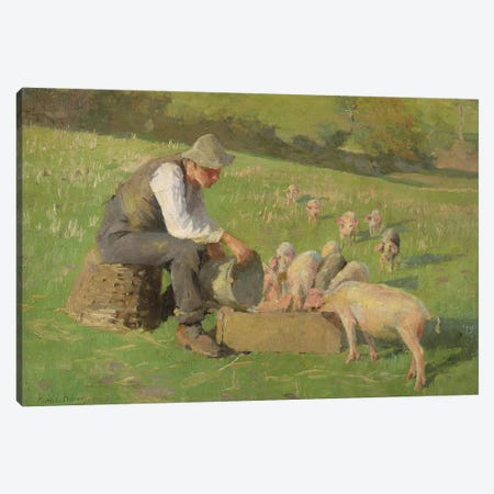 Feeding Time  Canvas Print #BMN3749} by Harold Harvey Canvas Artwork