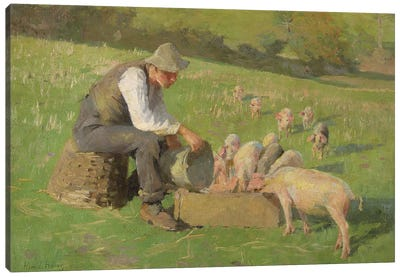 Feeding Time  Canvas Art Print
