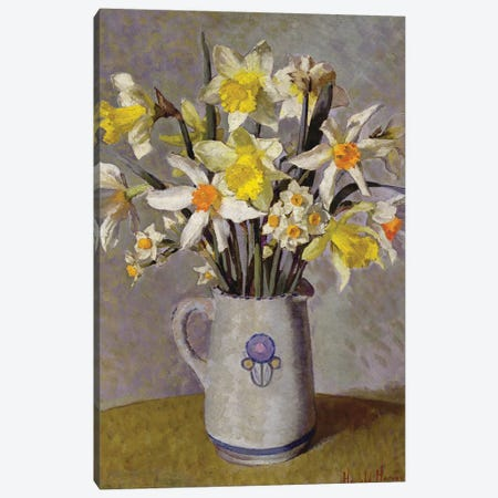 Daffodils  Canvas Print #BMN3750} by Harold Harvey Canvas Art Print