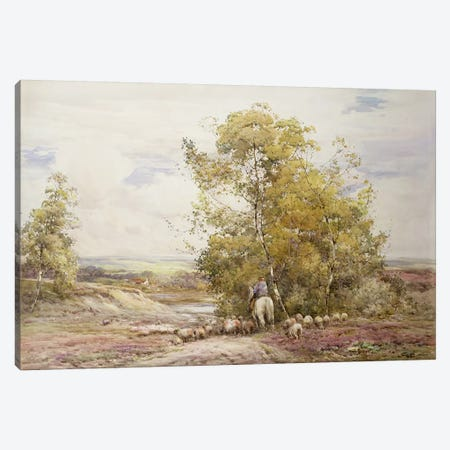 Dorset Pastoral  Canvas Print #BMN3751} by Claude Hayes Canvas Print