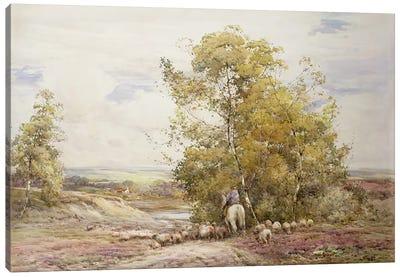 Dorset Pastoral  Canvas Art Print