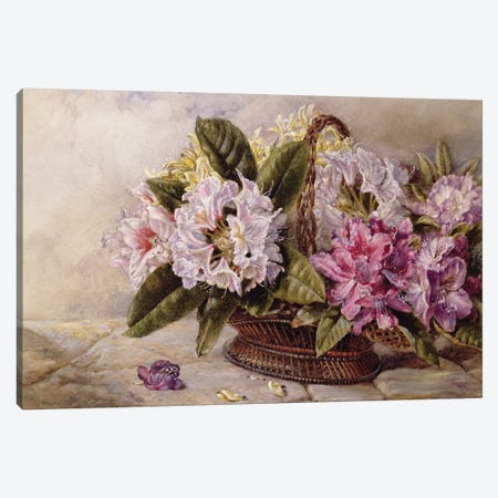 Rhododendrons  Canvas Print #BMN3757} by English School Canvas Art