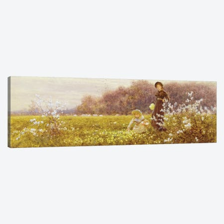 Picking Primroses, 1896  Canvas Print #BMN3763} by Thomas James Lloyd Canvas Artwork