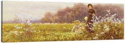 Picking Primroses, 1896  Canvas Art Print