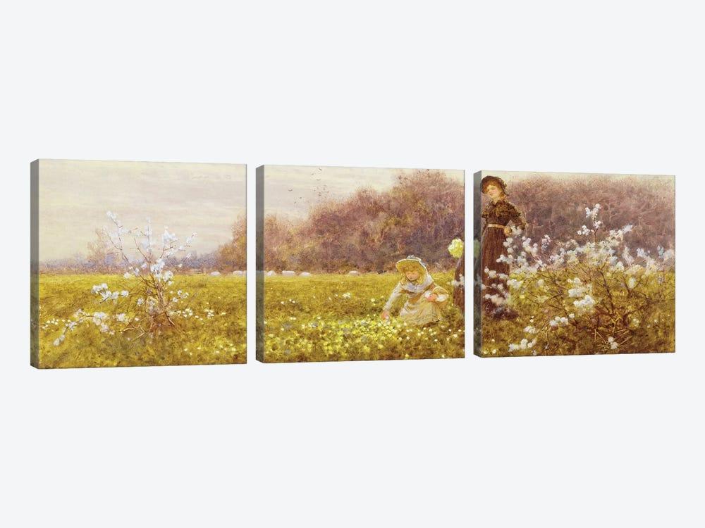 Picking Primroses, 1896  by Thomas James Lloyd 3-piece Canvas Art Print