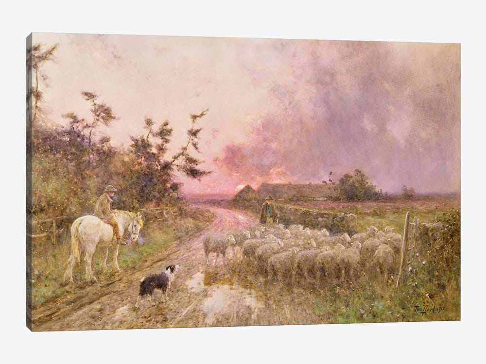 At the End of the Day, 1910  by Thomas James Lloyd 1-piece Canvas Print
