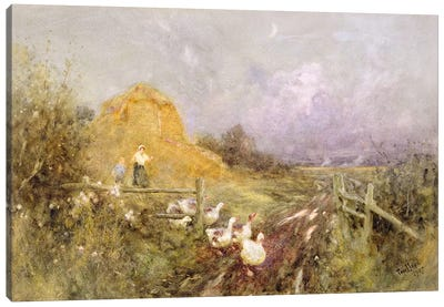 Driving Geese, Early Evening, 1907 Canvas Art Print