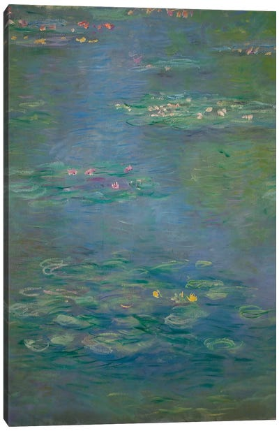 Waterlilies, detail, 1903  Canvas Art Print